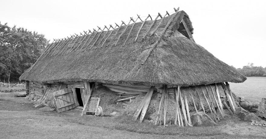 Lambalaut + saun Saaremaal Mujal Eestis harvaesinev ühendus lambalaut + saun ei olnud Saremaal väga haruldane. Matsi. Kungla. Valjala. Foto: H. Pärdi, 2008